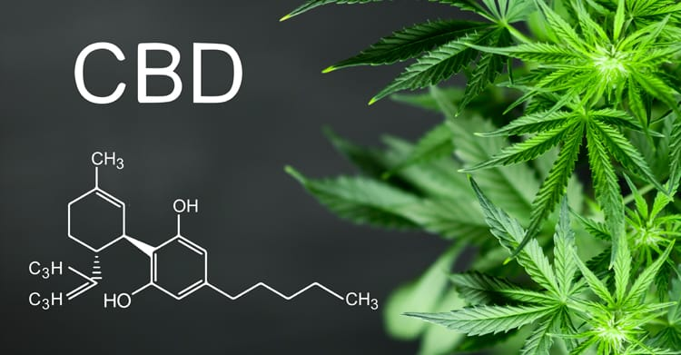 Choose The Best CBD Oil For Anxiety And See The Effects